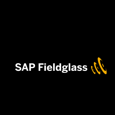 How ScriptRunner accelerated automation for SAP Fieldglass