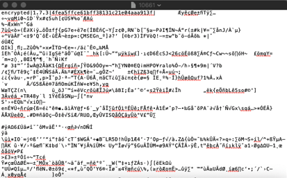 encrypted attachement view