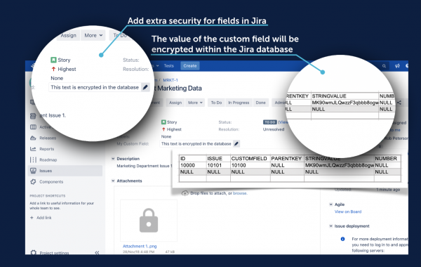 encrypted fields - jira security, Encryption for Jira